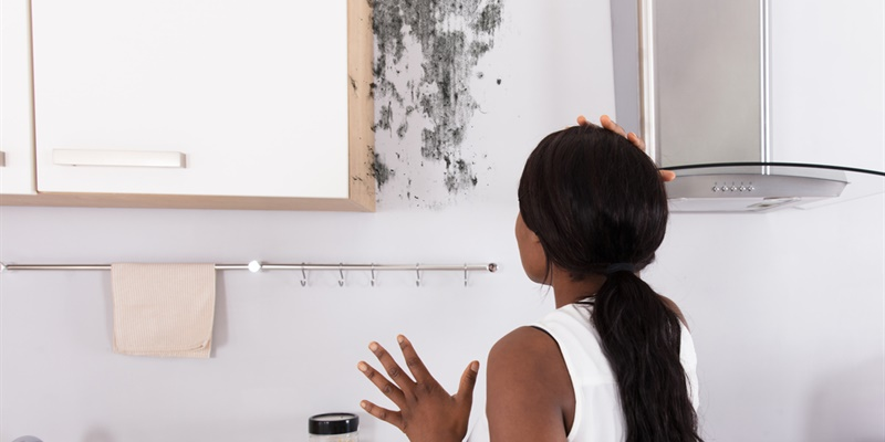 Santé : quels sont les risques de l'humidité dans la maison ?